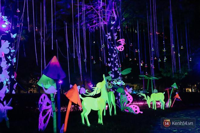 Hàng trăm bạn trẻ đổ xô về khu vườn ánh sáng lung linh độc nhất Sài Gòn giữa tiết trời se lạnh - Ảnh 12.