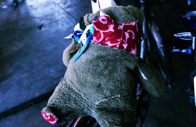 Người mẹ quét rác và 2 đứa trẻ thiểu năng suốt 10 năm ôm con gấu bông rách vì tưởng là… bố - Ảnh 4.