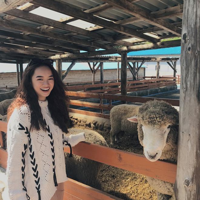 Kaity Nguyễn bất ngờ trở thành host loạt chương trình về làm đẹp, du lịch, ẩm thực tại Hàn Quốc - Ảnh 1.