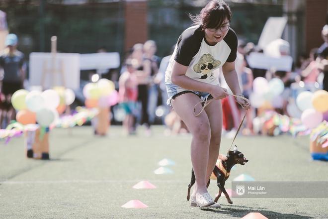Lễ hội thể thao dành cho chủ và thú cưng độc đáo, đáng yêu nhất Hà Nội! - Ảnh 9.