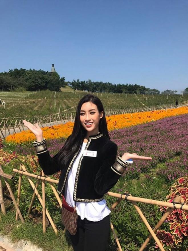 Mỹ Linh tại Miss World 2017: Mở đầu mờ nhạt, toả sáng ở những chặng đua nước rút và trượt Top 15 đầy tiếc nuối - Ảnh 1.