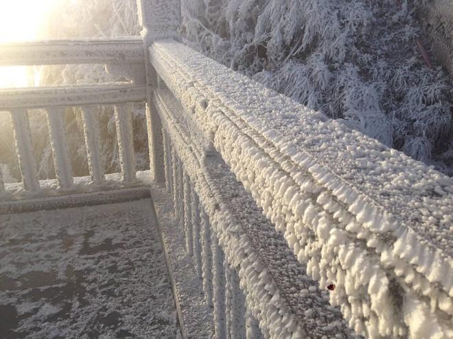 Đỉnh Fansipan trắng xóa băng tuyết khi nhiệt độ trong đêm giảm xuống -7 độ C - Ảnh 5.