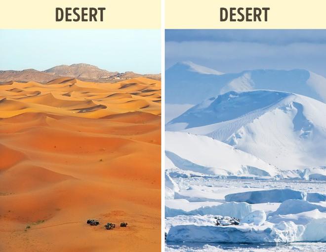 8 câu hỏi ai cũng trả lời nhanh như chớp mà sai bét, dám cá bạn chưa biết gì về sa mạc lớn nhất thế giới - Ảnh 8.