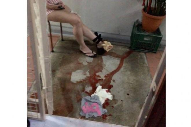 Singapore: Đi tìm mèo lạc lúc 4 giờ sáng, người phụ nữ bị trăn dài 3m tấn công - Ảnh 1.