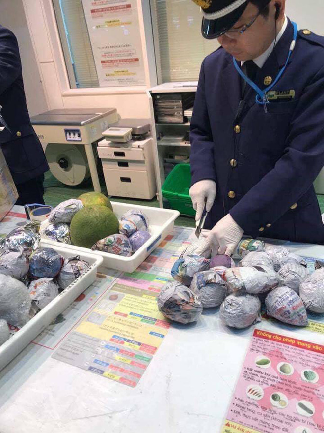 Hải quan Nhật Bản áp dụng luật cấm: Du học sinh, khách du lịch không được mang theo đồ ăn, hoa quả khi nhập cảnh - Ảnh 1.