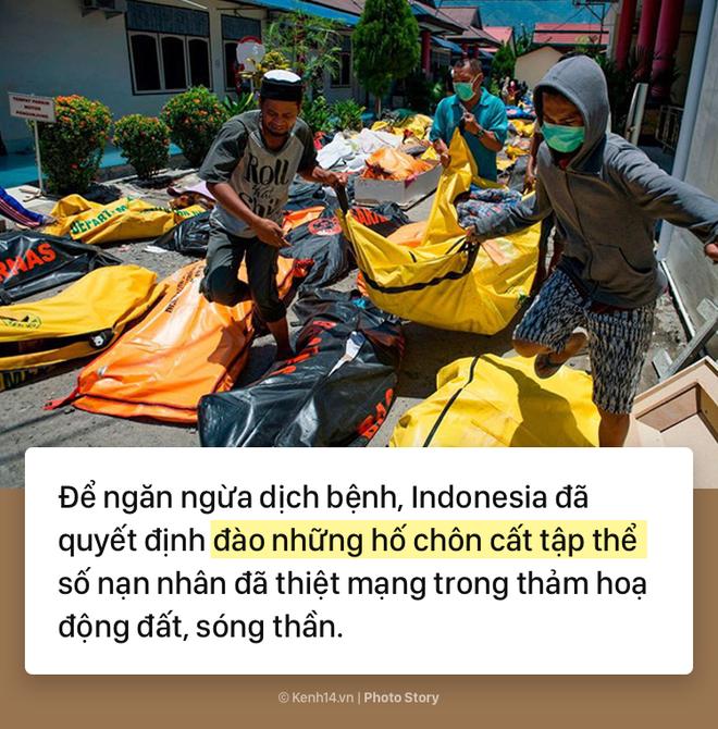 Indonesia: Toàn cảnh thảm họa kép động đất sóng thần tàn phá Indonesia - ảnh 4