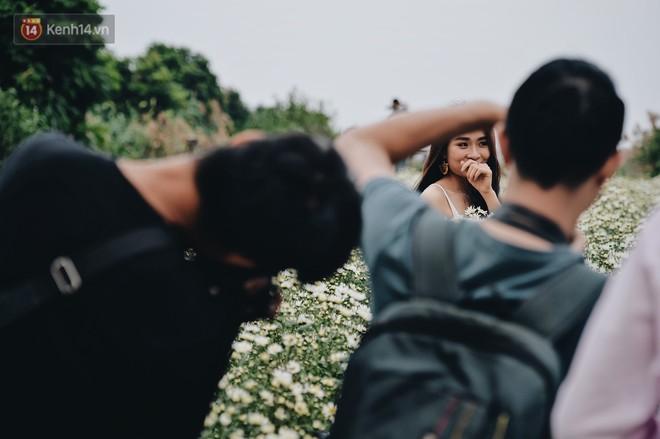 """Vườn cúc hoạ mi ở Hà Nội """"thất thủ"""" cuối tuần: 1 mét vuông có chục nhiếp ảnh gia và mẫu - Ảnh 6."""