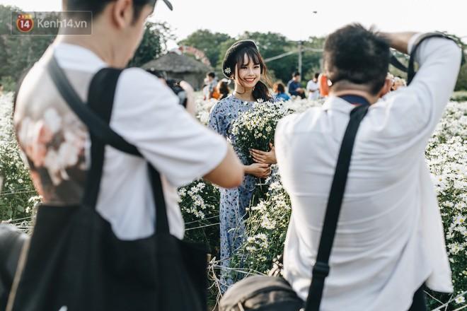"""Vườn cúc hoạ mi ở Hà Nội """"thất thủ"""" cuối tuần: 1 mét vuông có chục nhiếp ảnh gia và mẫu - Ảnh 8."""