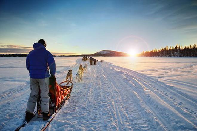 """Giữa Bắc Cực có một """"quả trứng vàng"""" khổng lồ nổi bần bật trên nền tuyết và nó là gì? - Ảnh 1."""