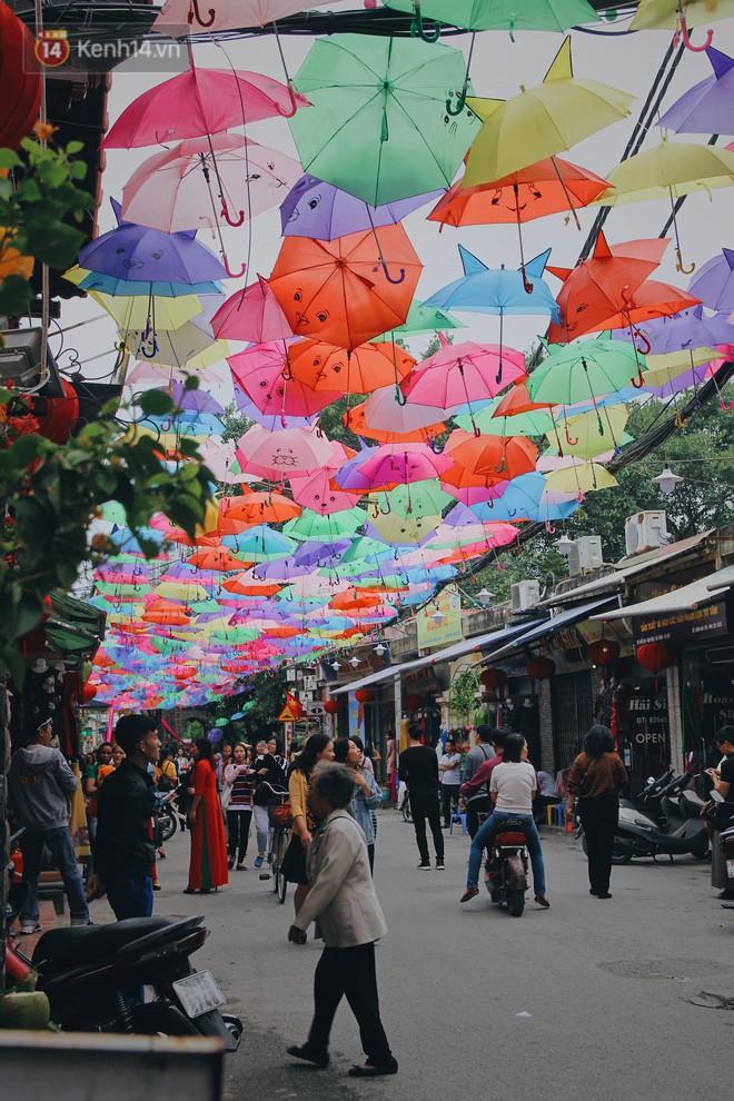 """Hà Nội xuất hiện """"con đường ô"""" lãng mạn như ở Bồ Đào Nha, người dân ùn ùn kéo đến chụp ảnh - Ảnh 4."""