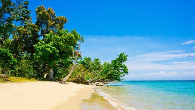 Bán đảo Masoala: Thiên đường nhiệt đới đa dạng bậc nhất thế giới nằm ở đây - Ảnh 1.