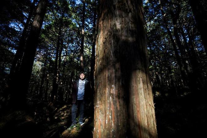 Người canh giữ khu rừng tự sát ở Nhật Bản: Hằng đêm vẫn cất lên tiếng hát để xoa dịu những tâm hồn bị tổn thương - Ảnh 4.