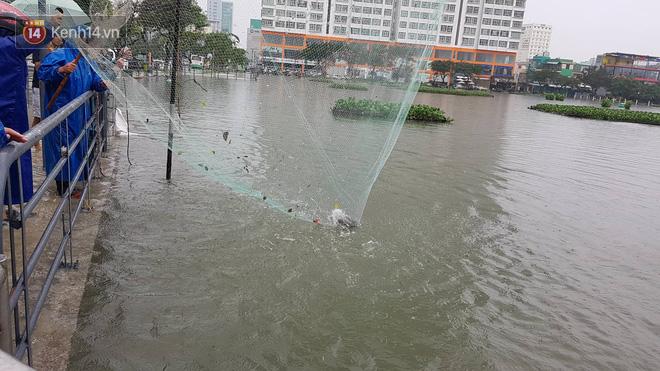 """Hình ảnh chưa từng có ở Đà Nẵng: Xuồng """"bơi"""" trên phố, người dân quăng lưới bắt cá giữa biển nước mênh mông - Ảnh 11."""