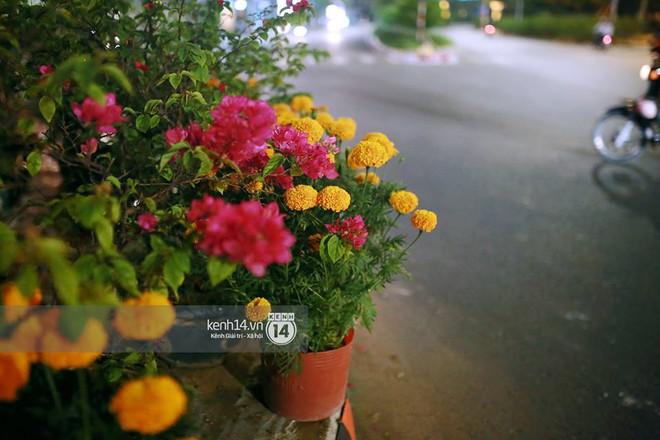 """Câu chuyện đáng yêu về hai vợ chồng """"dịu dàng giữa thịnh nộ"""": Mang hoa ế 30 Tết trang trí cho vòng xoay ở Sài Gòn - Ảnh 4."""