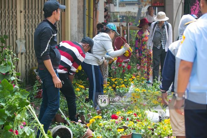 """Câu chuyện đáng yêu về hai vợ chồng """"dịu dàng giữa thịnh nộ"""": Mang hoa ế 30 Tết trang trí cho vòng xoay ở Sài Gòn - Ảnh 1."""