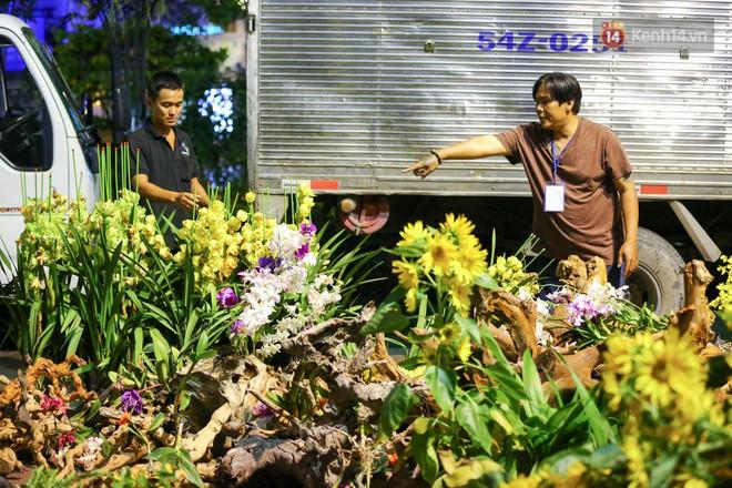 Bên cạnh đó, những chậu hoa lan có giá trị được tập kết lại một chỗ, đưa lên xe tải đem đi ươm trồng tiếp tục tại một khu vực khác