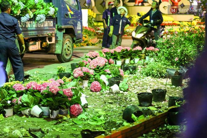Những chậu hoa trang trí dọc phố đi bộ được công nhân công ty cây xanh đưa lên xe