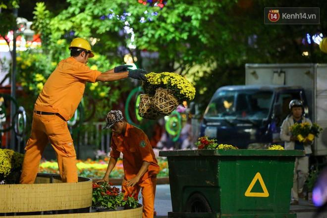 Những chậu cúc đã nở cũng được bỏ vào xe rác đem đi