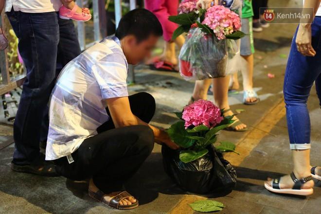 Một người đàn ông bỏ hoa vào túi nilon để đem về