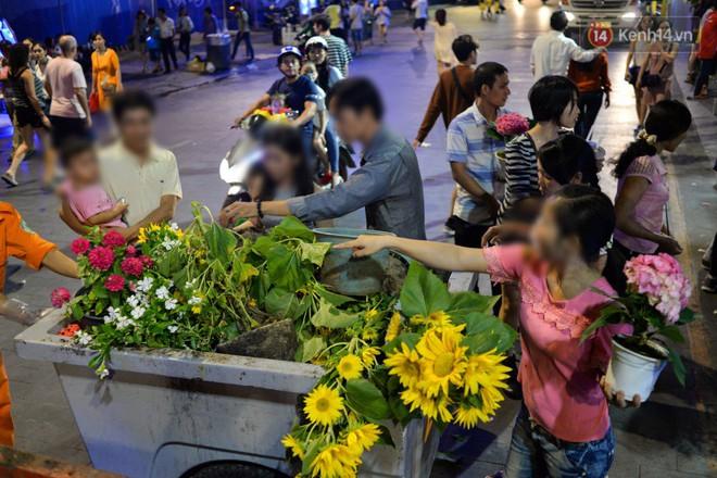 Một số người dân lựa những cây hoa còn nguyên vẹn đem về nhà