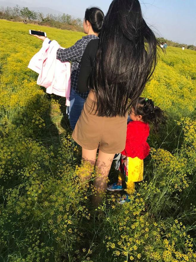 Cánh đồng hoa thì là ở Ninh Thuận vừa mở cửa 4 ngày đã vội vàng đóng cửa do bị khách tham quan giẫm đạp - Ảnh 4.