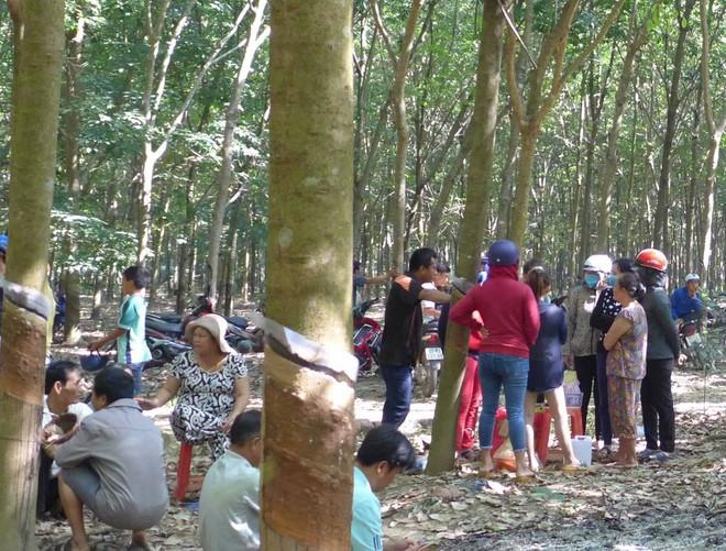 Bắt giữ nghi can hiếp dâm bé gái 4 tuổi, ném xác xuống giếng trong rừng cao su ở Bình Phước - Ảnh 2.