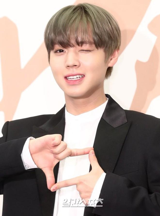 Vừa trở lại, Wanna One dính 'phốt' chửi bậy, lỡ lời phẫn nộ với công ty quản lý vì không biết livestream bật
