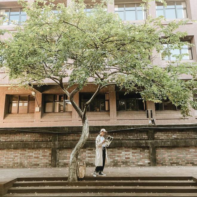 Cảnh đẹp, đồ ăn ngon ngập tràn, cafe xinh xắn - như thế đã đủ hấp dẫn để đi Đài Loan hè này chưa? - ảnh 51
