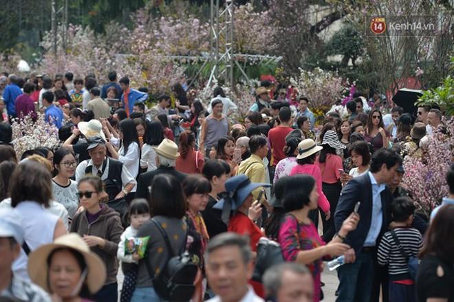 Hàng ngàn người dân Hà Nội chen chúc trong buổi sáng đầu tiên mở cửa Lễ hội hoa anh đào - Ảnh 3.