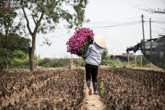 """8/3 của những người phụ nữ không bao giờ thiếu hoa: """"Mình thích thì mang hoa về tự cắm, chẳng cần chờ ai tặng cả!"""" - Ảnh 7."""