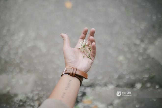 Chùm ảnh: Đây là Hà Nội, của những ngày trắng muốt hoa sưa... - Ảnh 8.