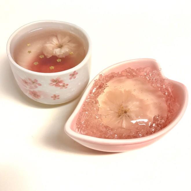 Hoa anh đào muối: tinh hoa ẩm thực Nhật Bản, đến đây thì nhất định phải ăn thử - Ảnh 7.