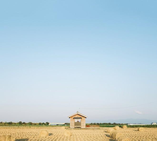 Chẳng ai rời mắt được những bức hình chụp Nhật Bản rất bình yên và trong trẻo của chàng trai Việt Nam này - Ảnh 13.