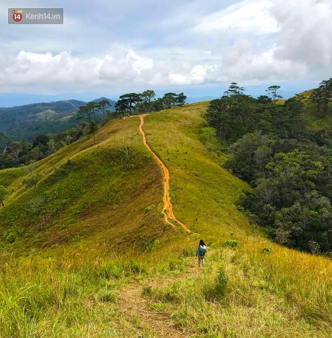 Những tai nạn đáng tiếc ở Tà Năng - Phan Dũng: Cung đường trekking đẹp nhất Việt Nam nhưng cũng đầy hiểm nguy khó lường 2