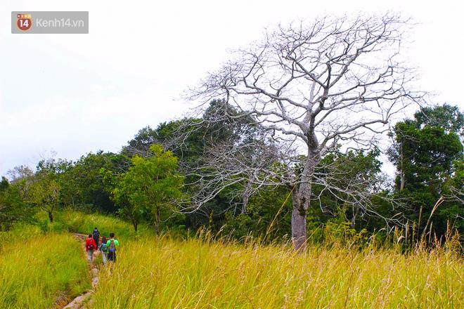 Những tai nạn đáng tiếc ở Tà Năng - Phan Dũng: Cung đường trekking đẹp nhất Việt Nam nhưng cũng đầy hiểm nguy khó lường 4
