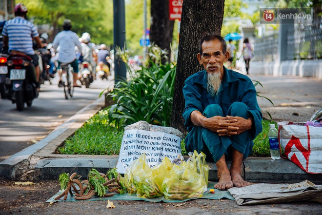 """Có một mùa """"chua chua ngọt ngọt"""" ở Sài Gòn: Mùa lá me bay gợi đầy ký ức - Ảnh 9."""