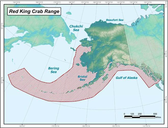 Bắt cua hoàng đế Alaska nguy hiểm chết người nhưng còn 1 việc đáng sợ không kém: quay phim... nghề đánh bắt đó! - Ảnh 2.
