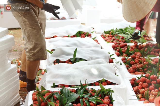Về Bắc Giang thăm người dân Lục Ngạn trước thông tin 10 ngàn 3kg vải thiều:
