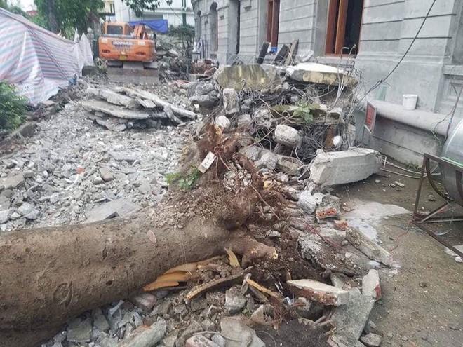 Hà Nội: Cây bất ngờ gãy đổ đè 5 người trên phố Quán Sứ, 2 người bị thương nặng 3