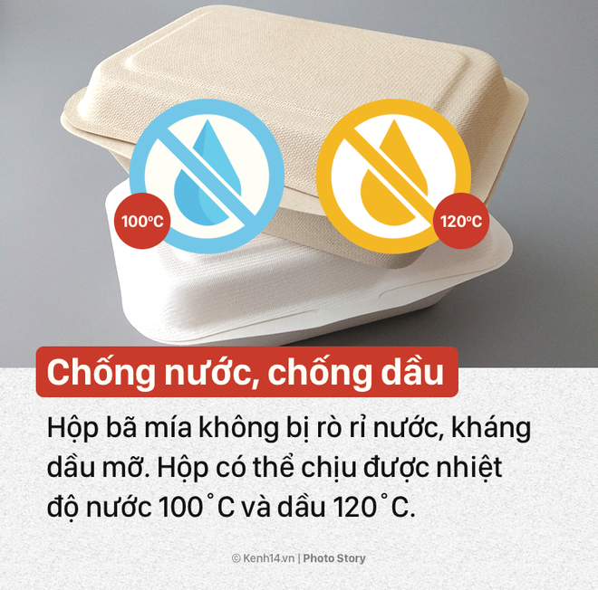 Ý tưởng này sẽ giúp bạn nói không với hộp xốp đựng thức ăn độc hại - Ảnh 3.