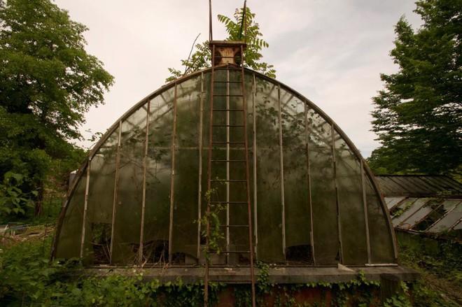 Bên trong khu vườn bị bỏ hoang ở Paris, nơi 100 năm trước con người từng bị đem ra triển lãm, mua vui chẳng khác gì ở sở thú - Ảnh 12.