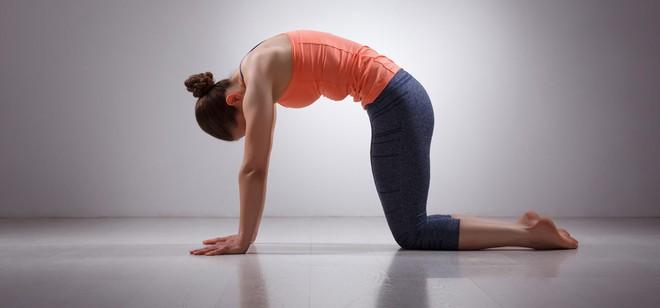 Gợi ý 3 bài tập đơn giản chữa trị đau lưng khi ngồi quá lâu - Ảnh 4.