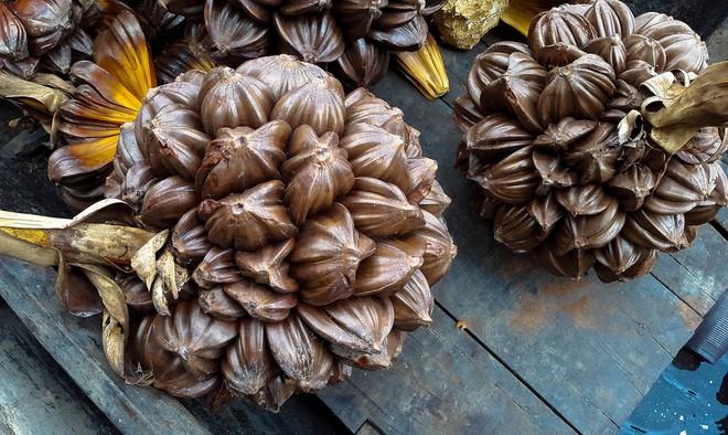 Người miền Tây có 2 loại quả ngọt thơm, độc lạ cực kỳ hợp để giải nhiệt mùa hè - Ảnh 5.