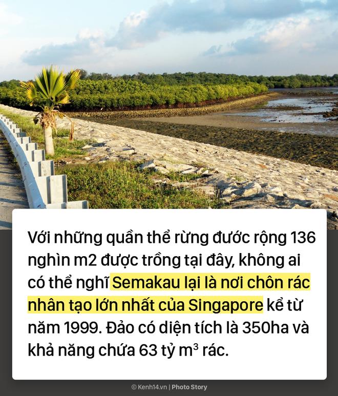 Bãi rác thành phố nằm trong lòng đại dương, bí quyết giúp quốc đảo Singapore luôn sạch đẹp - Ảnh 4.