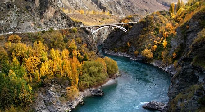New Zealand - điểm đến du học lãng mạn và đậm chất thơ dành cho những kẻ mơ mộng - Ảnh 6.