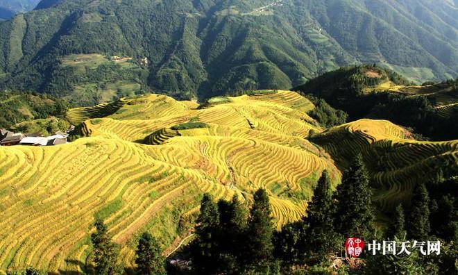Những ngôi làng cảnh sắc đẹp mê hồn nhất định phải ghé thăm vào mùa thu ở Trung Quốc - Ảnh 4.
