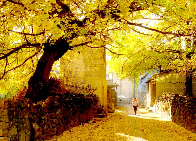 Những ngôi làng cảnh sắc đẹp mê hồn nhất định phải ghé thăm vào mùa thu ở Trung Quốc - Ảnh 15.