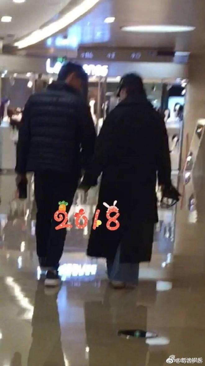 Ngô Kỳ Long - Lưu Thi Thi: Cứ khi nào bị chụp lén đều là hình ảnh đang nắm tay nhau ngọt ngào - Ảnh 5.