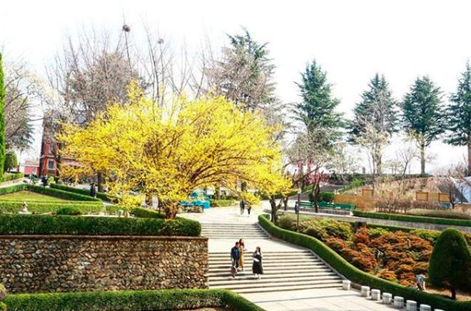 Hơn 100 phim Hàn đều chọn ngôi trường đại học tuyệt đẹp này làm bối cảnh ghi hình - Ảnh 16.