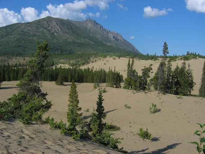 Kỳ lạ sa mạc nhỏ bé nhất thế giới: trông như một cồn cát nhưng vẫn đầy đủ đặc tính của một sa mạc hoàn hảo - Ảnh 2.